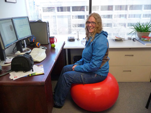 Take a seat a survival guide missie thurston blog - Stability ball for office ...